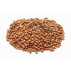 Brown Lentils 500g Organic